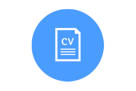 Graphic of a CV